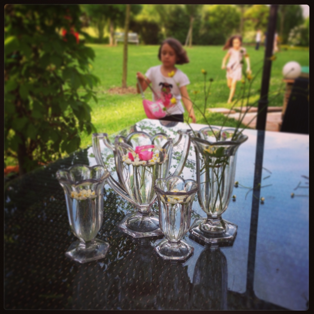 Glasses, Garden, Flowers and Girls