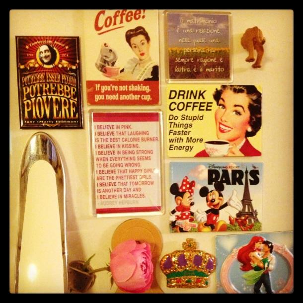 The fridge door